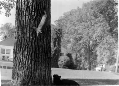 Carl with unidentified squirrel