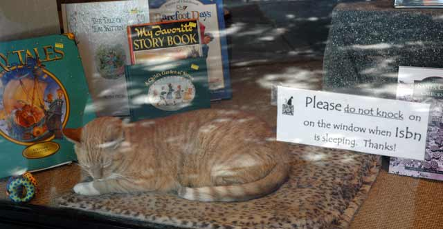 isbn in the store window
