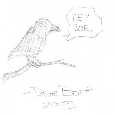 Pencil Sketch of Crow by Dave Bort