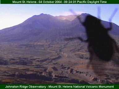 Volcano Webcam